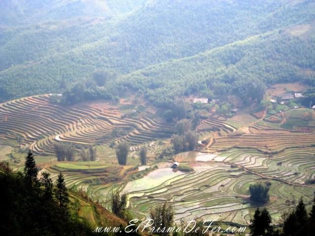 Mas paisajes de arrozales en Sapa