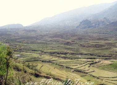 Sapa y sus paisajes de arrozales, Vietnam