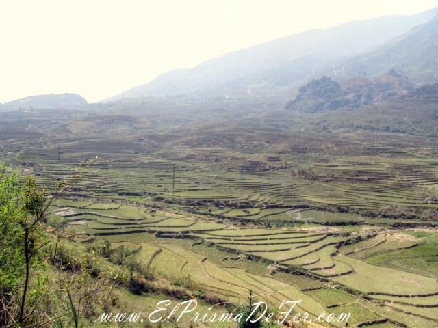 Sapa y sus paisajes de arrozales - Vietnam