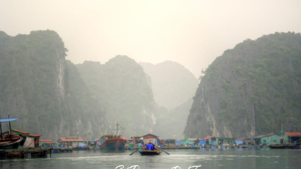 Galería de fotos: Vietnam