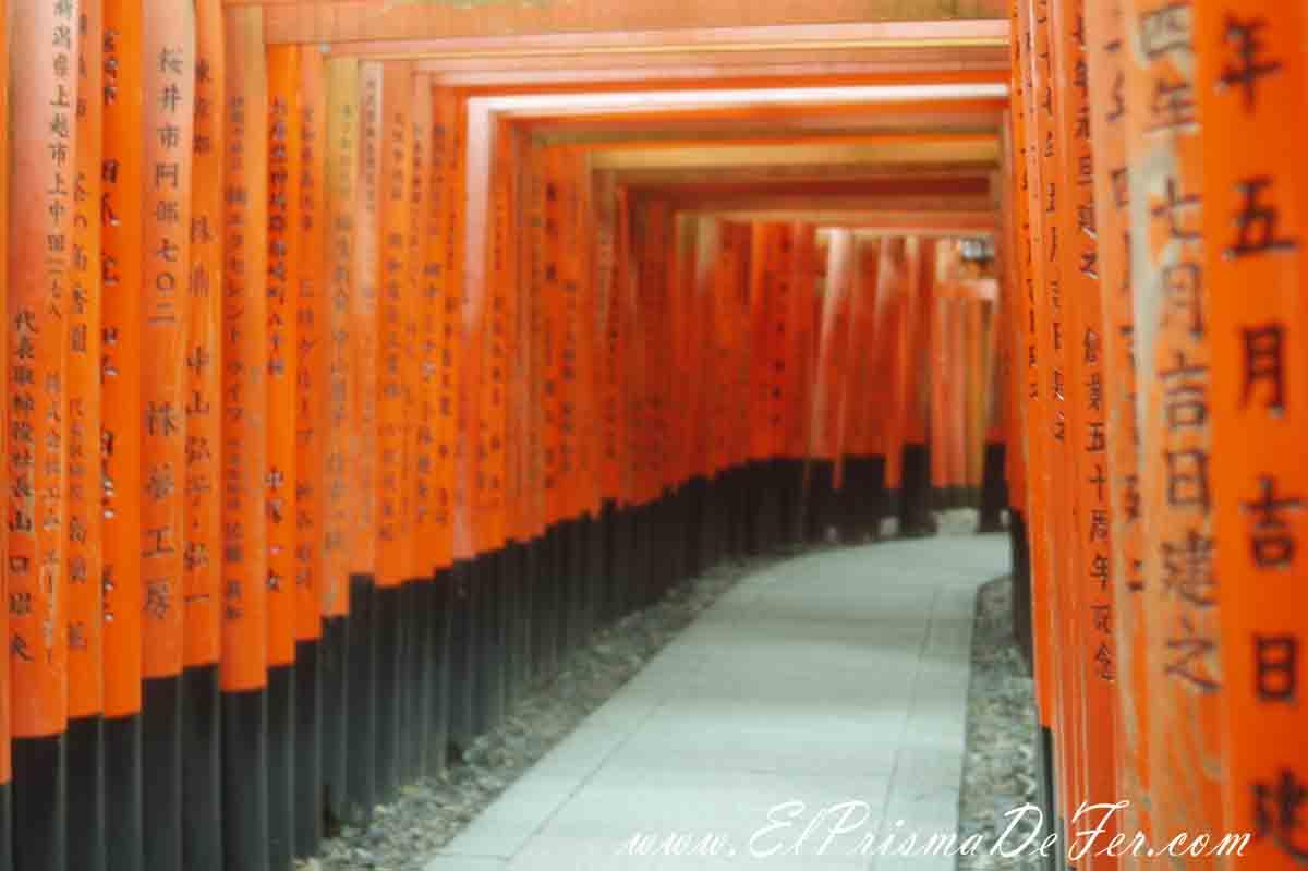 Fushimi Inari Torii en Kyoto