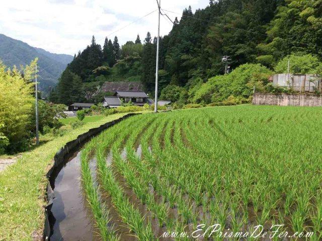Camino entre Tsumago y Nagisio