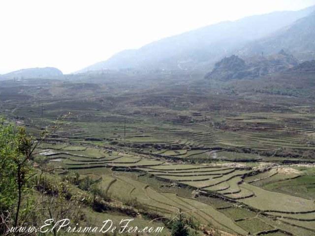Otro punto de vista del valle con sus arrozales