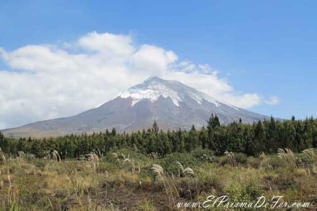 Vistas del Volcán dentro del Parque Cotopaxi
