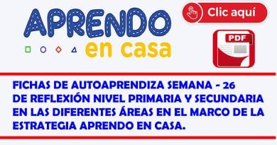 FICHA DE AUTOAPRENDIZAJE – PRIMARIA Y SECUNDARIA – SEMANA 26 DE FREFLEXION EN LAS DIFERENTES ÁREAS CURRICULARES.