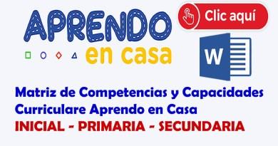 MATRIZ DE COMPETENCIAS Y CAPACIDADES CURRICULARES PARA ELABORAR NUESTRO PLANIFICADOR SEMANAL PARA  INICIAL,PRIMARIA Y SECUNDARIA.