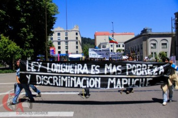 ley-longueira-mapuche.jpg