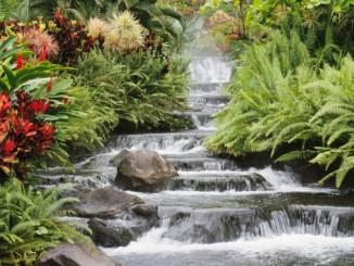 paisaje, naturaleza, eclesiastés