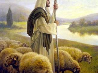 buen pastor, obra, bosquejo, jesús