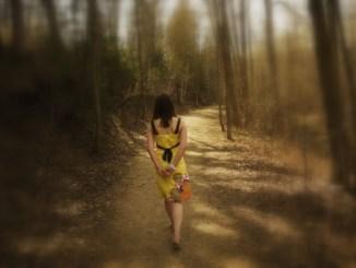 conversión, espiritual, bosque, caminata