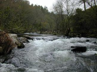 corriente, rio