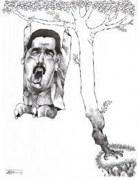Fruto de venezuela