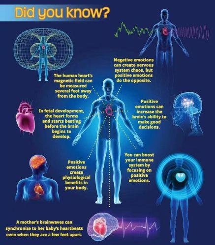 5a6e414bab744fe56dc877a99f3c190f--human-heart-quantum-physics