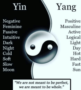 yin-yang-positive-negative-masculine-feminine-passive-active-logical-intuitive-20322306