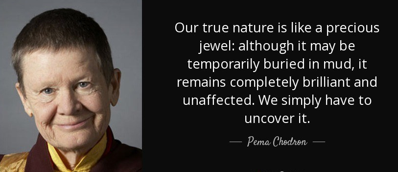 quote-our-true-nature-is-like-a-precious-jewel-although-it-may-be-temporarily-buried-in-mud-pema-chodron-77-46-00