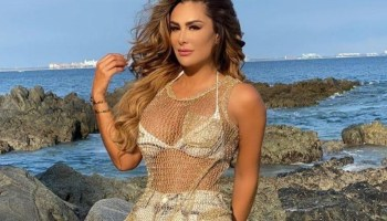 https://www.debate.com.mx/show/Se-filtra-el-vestido-de-novia-que-Ninel-Conde-supuestamente-usaria-en-su-boda--20201028-0322.html