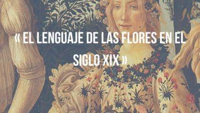 Photo of El lenguaje de las flores en el siglo XIX