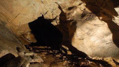 Photo of Cova Eirós, la huella prehistórica en Galicia