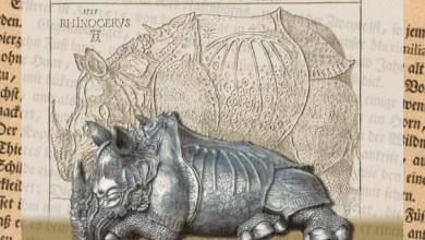 Photo of El rinoceronte de Durero
