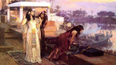 Photo of Merytneit, la misteriosa primera reina del Antiguo Egipto