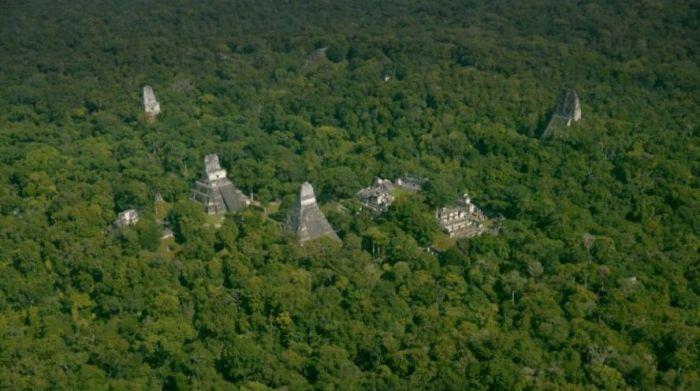 mayas naachtun