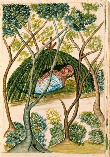 códice Trujillo Indio enfermo de viruela, en un dibujo del códice Trujillo del Perú, del siglo XVIII.