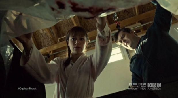 Orphan Black 2x08: Donnie enseña a Alison el cadáver de Leekie y admite haberle disparado con la pistola de su mujer.