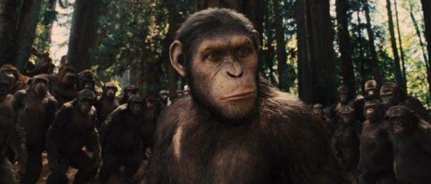 Cesar y sus amigos en Rise of the Planet of the Apes