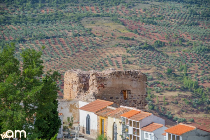 Alcaraz-Castillo-Ruinas-67