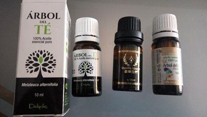 El aceite del árbol del té y sus infinitos beneficios