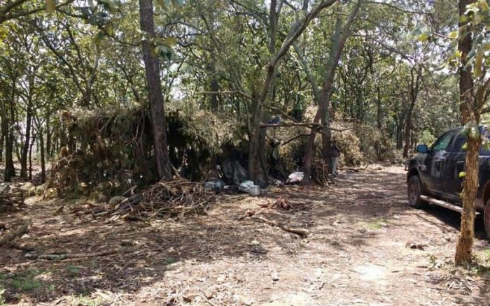 Los campamentos estaban camuflados con hojas para que no los vieran desde el aire. La Fiscalía de Jalisco identificó puntos de calor en la sierra de Ahuisculco y fue así como logró localizarlos. Foto: Especial