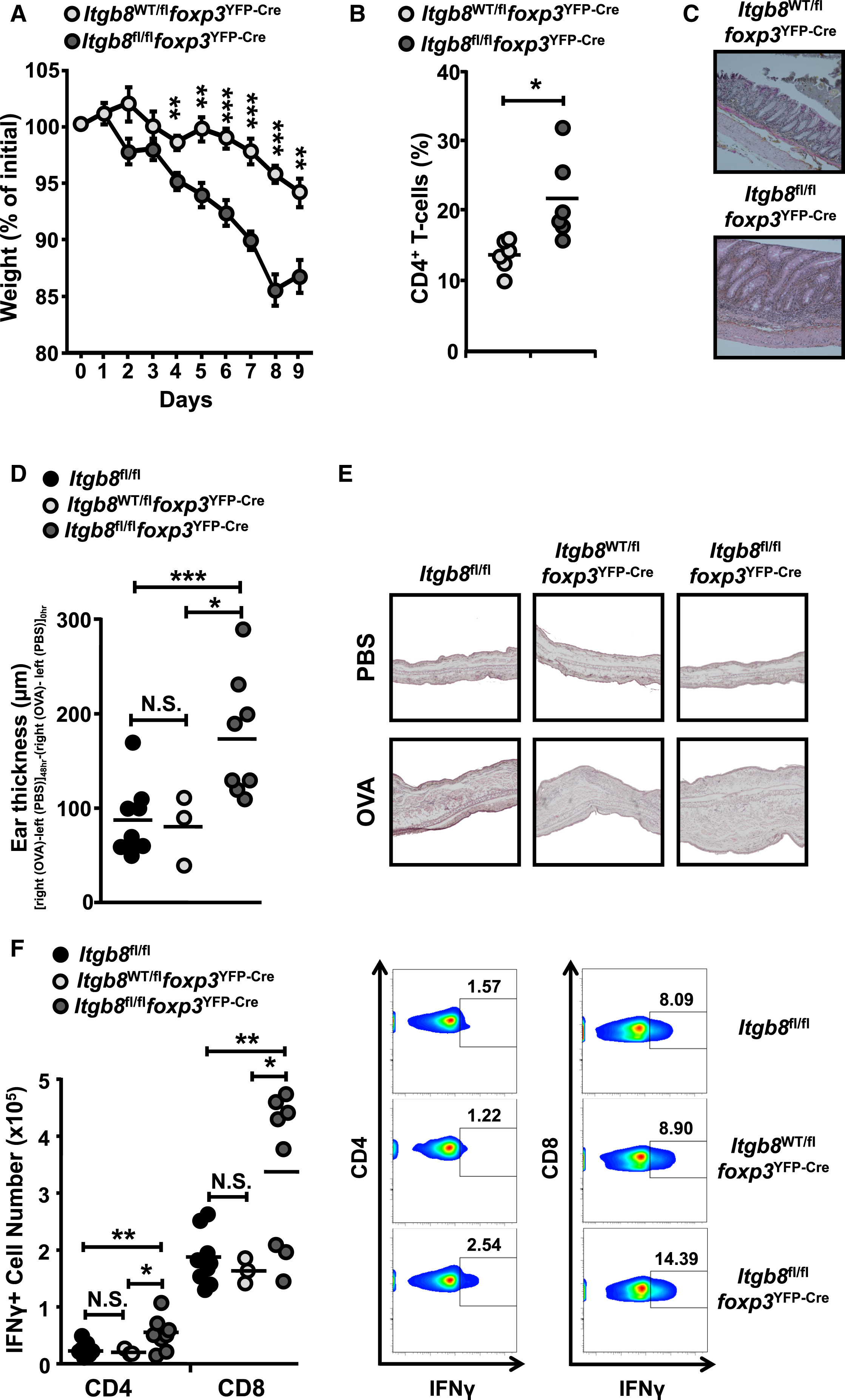 Integrin V 8 Mediated Tgf Activation By Effector