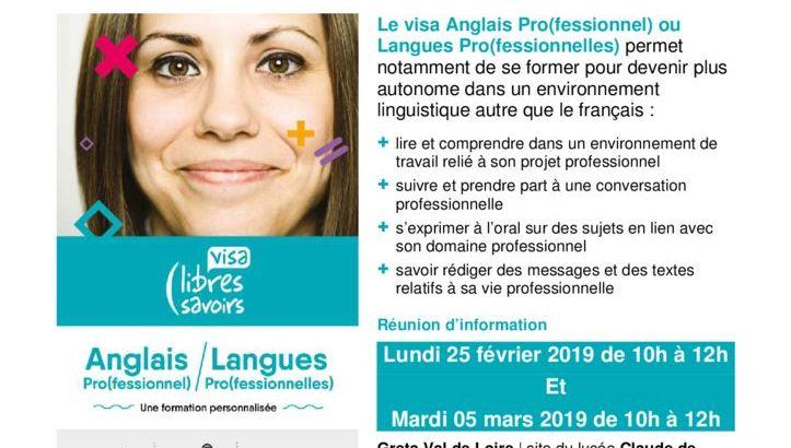 thumbnail of Publicité VISAS LANGUES ROMORANTIN LOT 86 2019