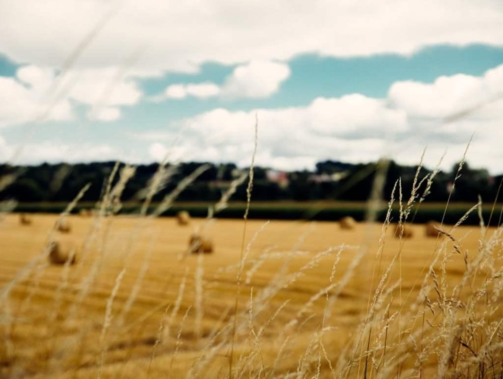 paysage thierache