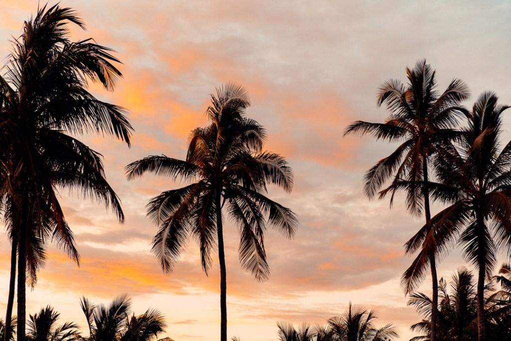 coucher de soleil the sands