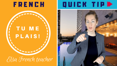 How to use the verb PLAIRE in French