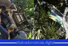 VMT inicia investigación para determinar las causas del aparatoso accidente en Chiltiupán