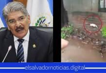 Vídeo| Salvadoreños captan a Norman Quijano saliendo de su curul para ir a visitar su comunidad