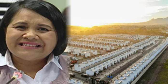 Cristina Cornejo dice que el proyecto de construcción de casas era algo que el FMLN ya tenía preparado solo les faltó tiempo para hacerlo