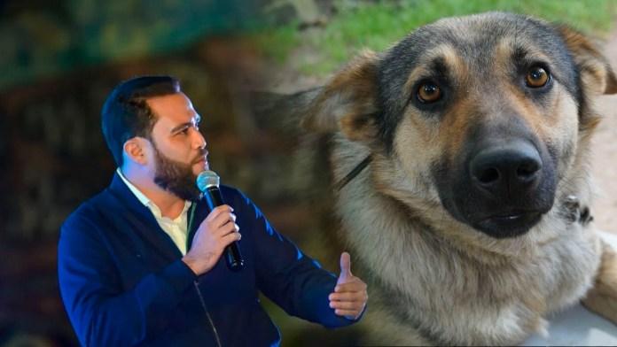 Mario Durán le apuesta a un hospital veterinario municipal como una solución a la problemática de que hay muchos perritos criollos