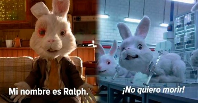 «Save Ralph» la conmovedora campaña contra pruebas en animales, que ha dado la vuelta al mundo