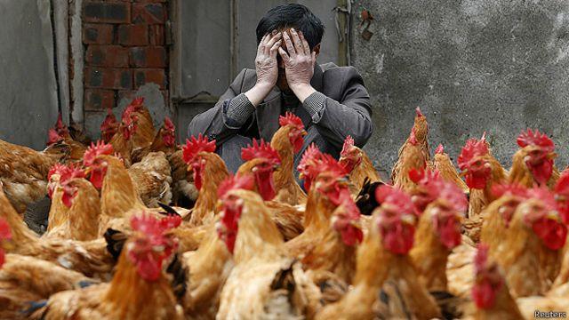 China confirma el primer caso mundial de gripe aviar H10N3 en humanos