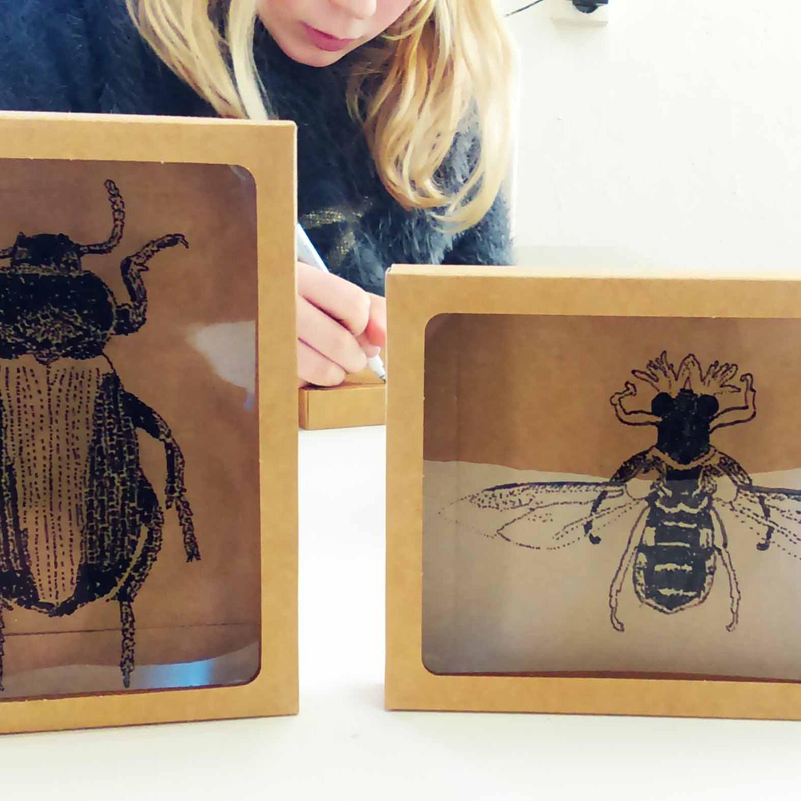 bugsclub - insecten tekenen