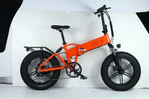 865CF1C036E54A89B5EE79B602DC13CC    Ghostride 750W - Custom made