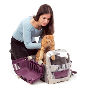 Transportín adecuado para gatos