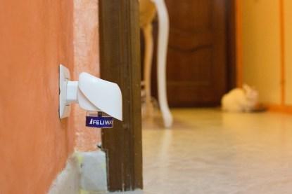Feliway - causas y soluciones para el marcaje con orina