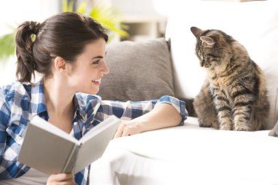Cómo ayudar a mi gato a volver a la rutina después de las vacaciones
