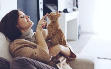¿Crees que tu gato se siente feliz contigo?