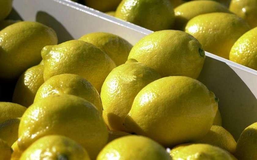 Coca Cola amenaza con dejar de comprar jugo concentrado de limón, que se produce en Tucumán.