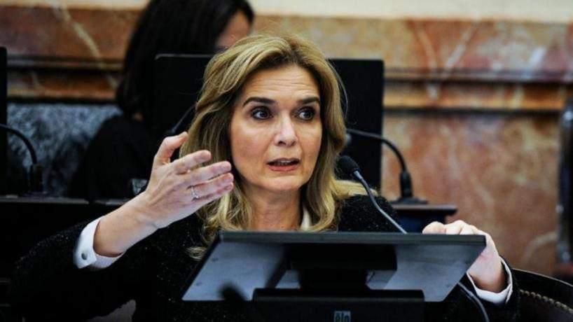""""""" PELOTUDA"""" , el insulto del canciller Felipe Sola a la senadora Elias de Perez"""